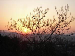 笠間の夕陽