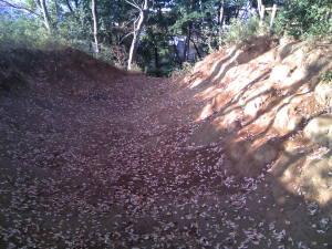 小金城の畝堀