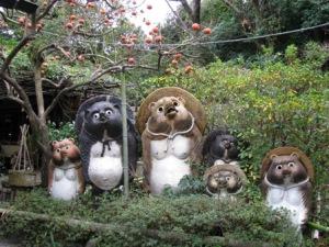 嵯峨野の狸