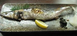 吉春の秋刀魚