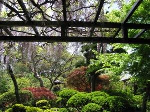 観音寺の庭