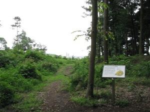 松ヶ崎城址公園