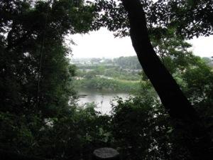 古利根公園から観た古利根沼