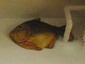 二日酔いの魚