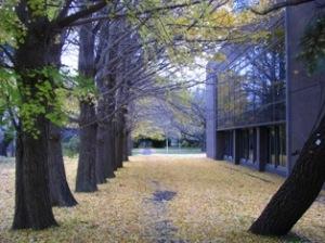 気象大学校