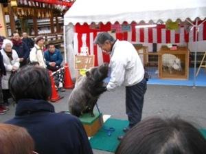 京都護国神社