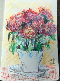 色鉛筆画紫陽花