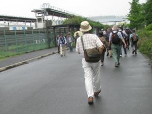 コアジサシ観察会