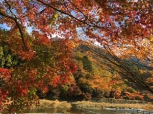 塩原渓谷紅葉
