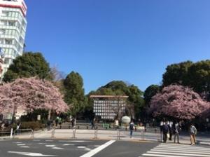 上野公園南交番口