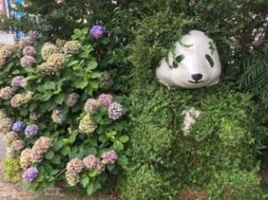 パンダ紫陽花