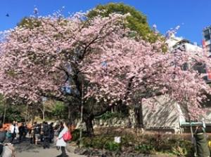 上野公園交番口